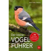 BLV Buch - Der kleine BLV Vogelführer