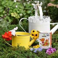 Komposttee bio-blütenguss Garten