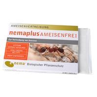nemaplus Ameisenfrei
