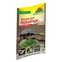 Neudorff Bestell Set Nützlinge gegen Bodenschädlinge für 100 m2