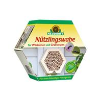 Nützlingswabe für Wildbienen und Grabwespen