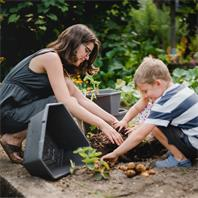 Paul Potato Kartoffeleturm ideal mit Kindern zu bepflanzen
