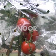 Tomatenhaube 0,65x10m