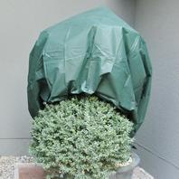Wintervlies grün