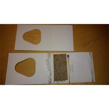 Schlupfwespen Trichgramma Speisemotten auf Pappkärtchen