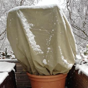 Winterschutzhaube