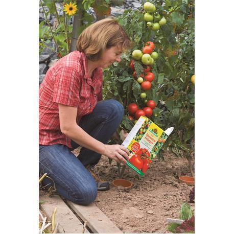 Anwendung Azet TomatenDünger