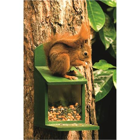Eichhörnchen-Futterautomat für Eichhörnchenfütterung im Garten