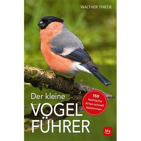 Der kleine Vogelführer Bestimmungsbuch für Vögel