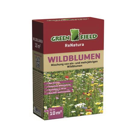 Wildblumenmischung mehrjährig