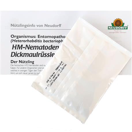 HM-Nemtoden gegen Dickmaulrüsslerlarven