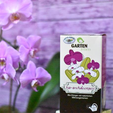 Komposttee bio-orchideenguss Zimmer