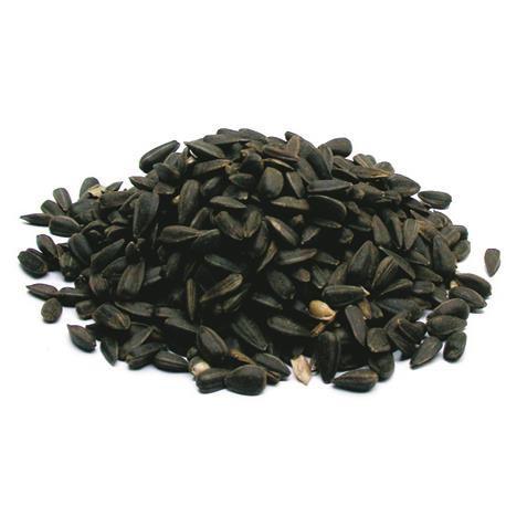 LBV Sonnenblumenkerne, schwarz 2,5kg
