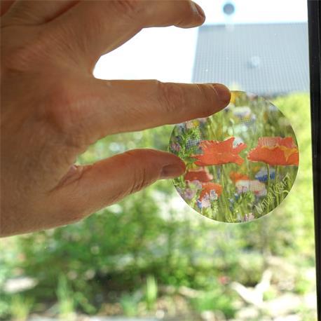 Naturkraft  FliegenLos Motivköder Fensterscheibe