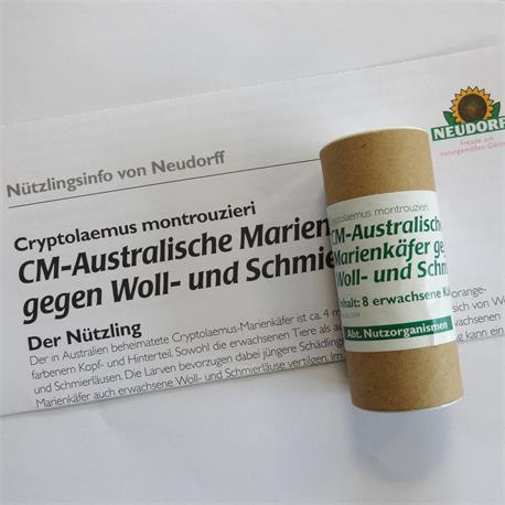 Neudorff CM Australische Marienkäfer