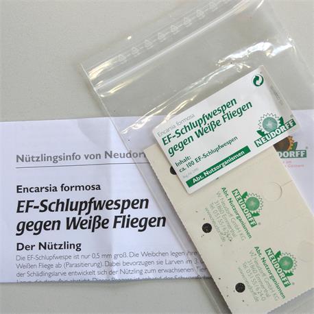 EF Schlupfwespen von Neudorff