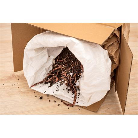 Neudorff Kompostwürmer 500 Stück