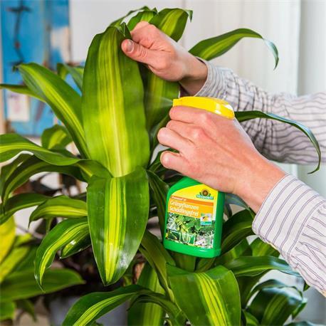 Anwendung Neudorff Promanal AF GrünpflanzenSchädlingsFrei