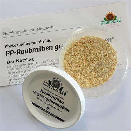 Neudorff Raubmilben gegen Spinnmilben