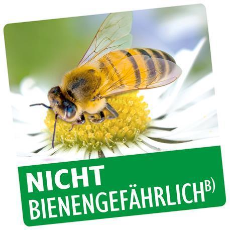Pflanzenschutzmittel ist nicht bienengefährlich