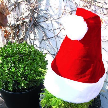 Nikolausmütze für Pflanzen Weihnachtsdeko