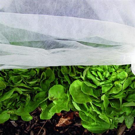 Schutzvlies  für Salta und Gemüse