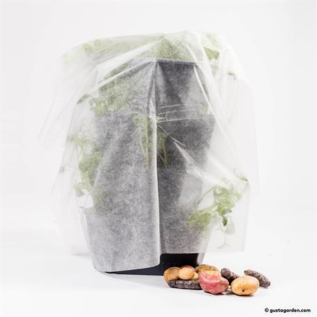 Paul Potato Vlies schützt vor Spätfrost