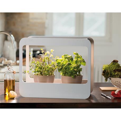 Romberg Home Garden Mini-Garten-Set