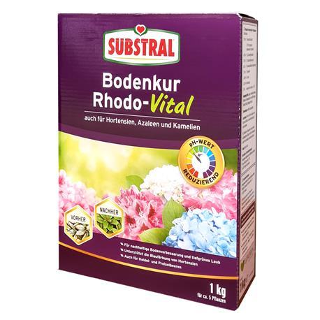 Substral Bodenkur Rhodo-Vital