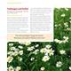 Handbuch Pflanzenschutz im Biogarten Seite 2