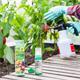 Neudorff Spruzit Neem GemüseSchädlingsfrei Anwendung