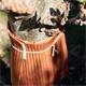Schacht Insekten Fanggürtel Stamm