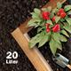 Bio-Erde für Tomaten und Gemüse