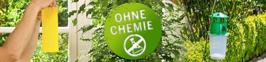 chemiefreie Fallen kaufen