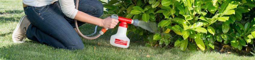 Gartenspritzen kaufen