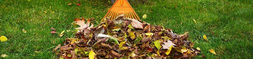 Herbstlaub kompostieren kaufen