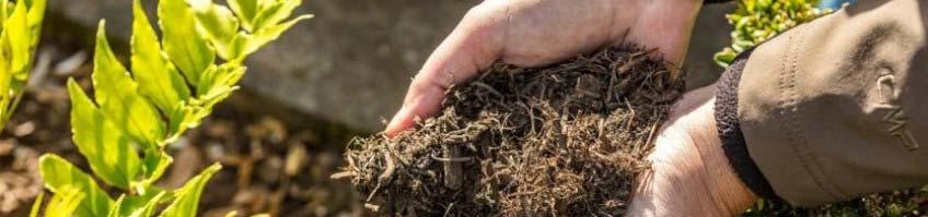 Kompost & Boden kaufen