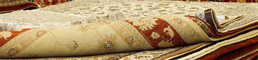 Motten im Teppich kaufen
