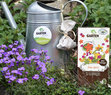 Pflanzen-Kompost-Tee