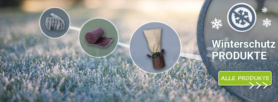 Pflanzen Winterschutz